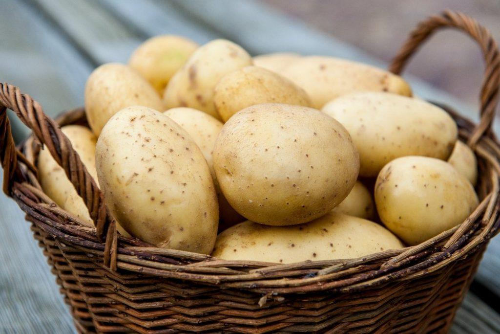 лечение геморроя картофелем форум