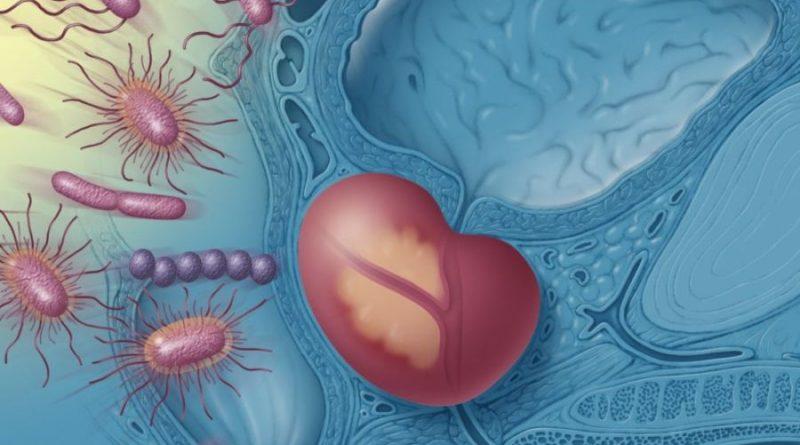 Бактериальный простатит на узи синдромы простатита у мужчин